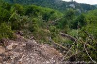 Оползень рядом с Гуамским ущельем