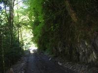 дорога на Солох-Аул